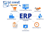Enterprise Software Purchase
